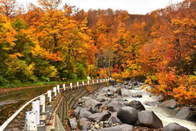 破間川渓谷 紅葉