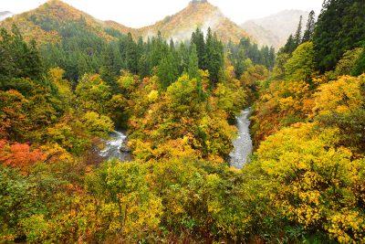 ほそど渓谷 紅葉シーズン