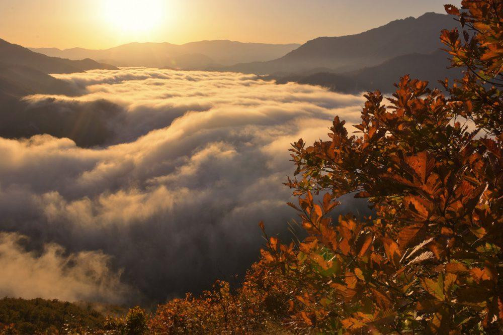 枝折峠 滝雲・雲海