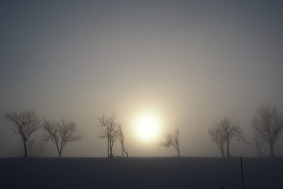 魚野川 川霧