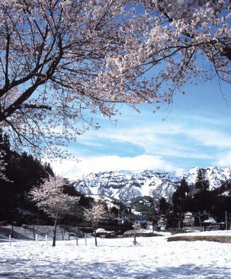 第2回【カレンダー賞】雪国の春