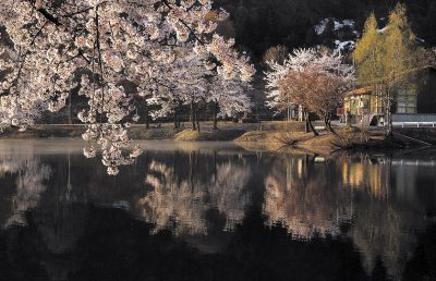 第4回【観光協会長賞】春巡る