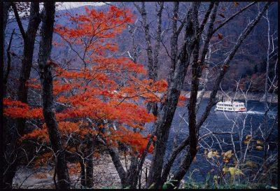 第6回【四季「秋」賞】晩秋の湖畔