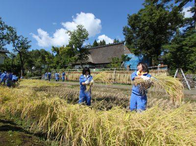 第9回【BSN新潟放送賞】いい米採れたね