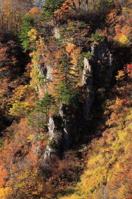 第13回【越南タイムズ賞】紅葉の岩峰