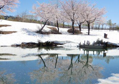 第15回【金賞】春を待ちわびて