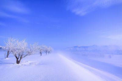 第16回【四季「冬」賞】凍て晴れ