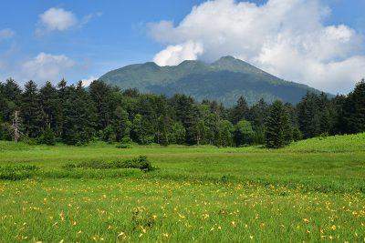 尾瀬国立公園 夏