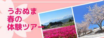 うおぬま春の体験ツアー